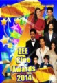 Zee Cine Awards 2014 / 2014